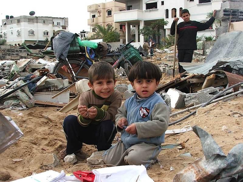 Результаты акции солидарности с палестинским народом