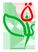 Благотворительный фонд «Садака»